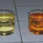 castor oil biodiesel