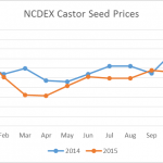 NCDEX castor seed prices