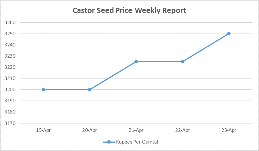 Castor Seed Price Weekly Report: Apr 18 – 23, 2016