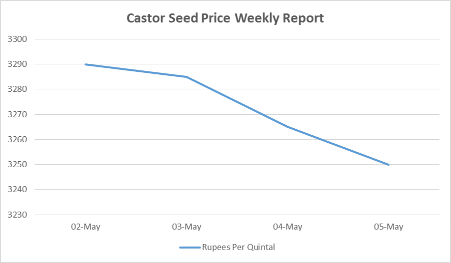 castor seed prices - may 2 to 6, 2016