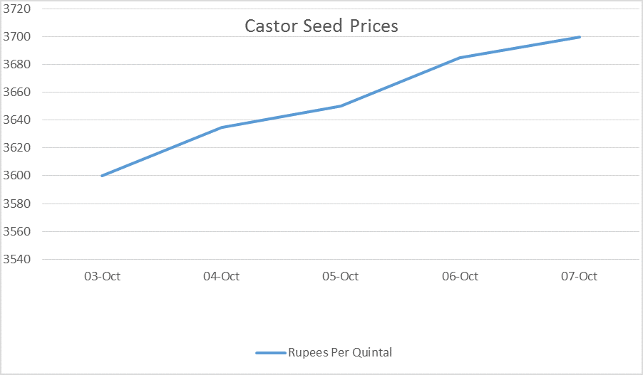 Castor Seed Price Weekly Report: Oct 03 – 07, 2016
