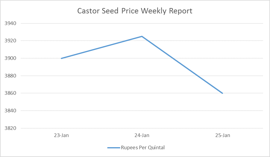 Castor Seed Price Weekly Report: Jan 23 – 25, 2017