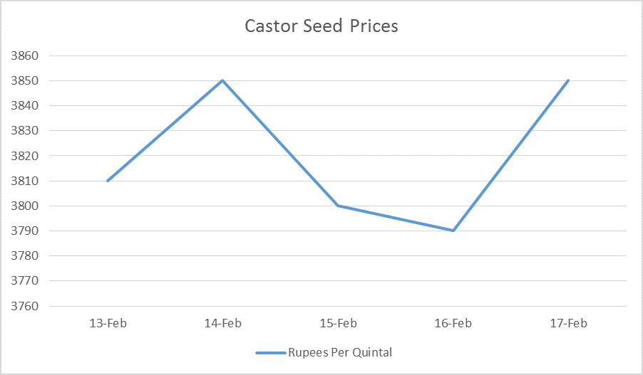 castor seed prices feb 13 to 17, 2017