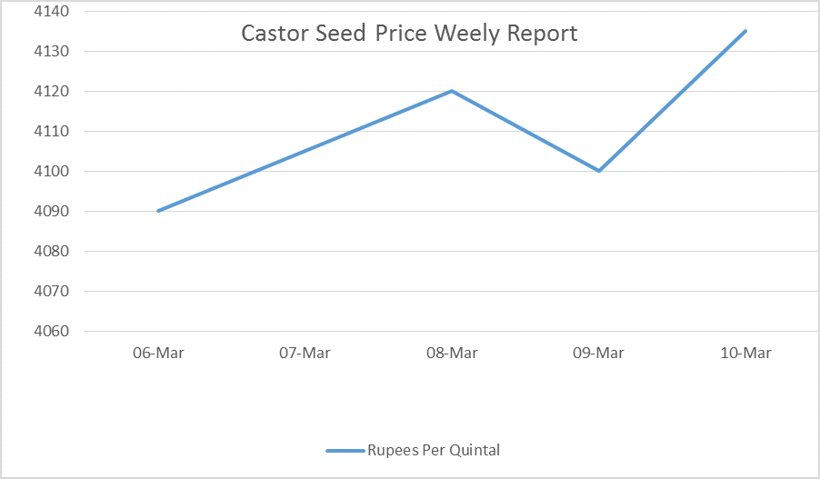 castor seed price weekly report - mar 6 - 10, 17