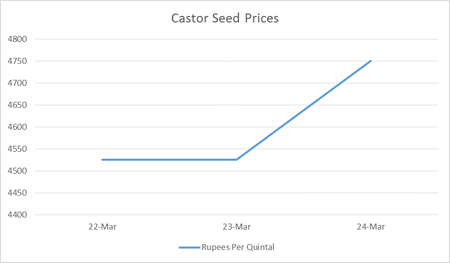 castor seed prices - mar 20 - 24, 2017
