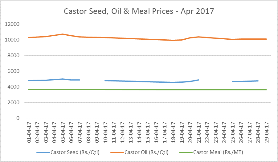 castor seed prices feb, 17