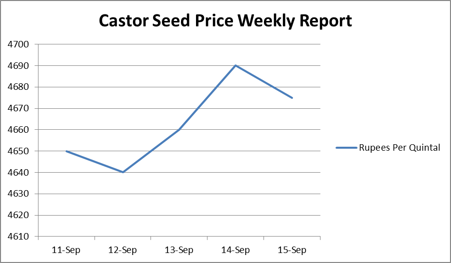 Castor Seed Price Weekly Report: Sep 11-15, 2017
